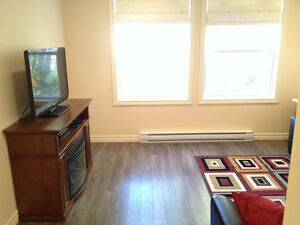 Furnished 2 Bedroom Apartment in Clarenville St. John's Newfoundland image 4