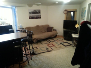 Furnished All Inclusive 2 Bedroom Apartment Basement