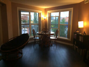 Beautiful Downtown Condo- roommate required
