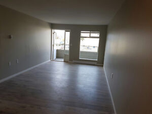 Newly renovated 2 bedroom condo