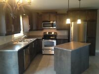 Duplex for rent. Mill rd moncton. Avail. March 1st