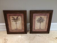 2 Palm tree pictures