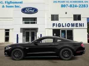 2015 Ford Mustang GT Premium - $325.45 B/W