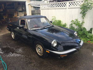 Alfa Romeo Spider Veloce Project - California car