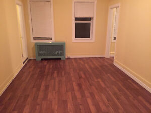 Newly Renovated One Bedroom Suite Close to Downtown