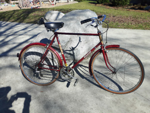 """Retro Large 23"""" Mens' Raleigh Renton Bike (tuned up/mint cond.)"""