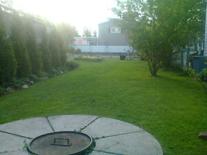 LAWN MOWING SERVICES STARTING AT LOW $65.00!!!! Cambridge Kitchener Area image 4