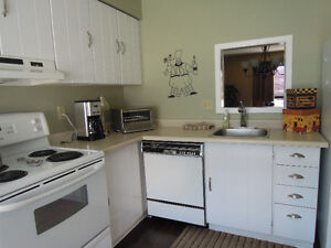 3 Bed Townhouse near Wharncliffe & Commissioners London Ontario image 3