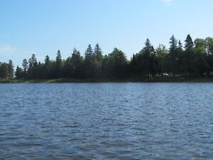 Wooded waterfront lot in quiet sub-division in Grand Barachois