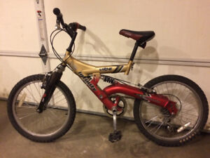 Kids Bike with 20 Inch Tires