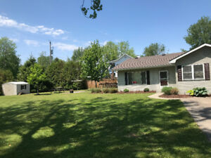 The 'Cozy Pine' Cottage in Long Point - Weekly Rentals are Open!