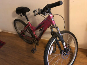 Pink Bike for Teen/Adult