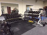 Commercial Dumbbells and brand new rack