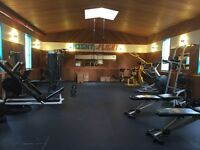 Might or Flight Fitness personal training