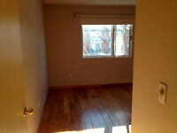 Spacious room available near Whyte Avenue & 99th Street