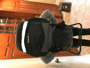 Backpack baby and toddler carrier