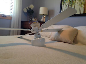 Matching white ceiling fans