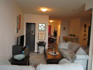 1 Bedroom Downtown Kitchener
