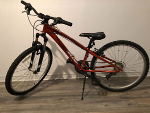 Raleigh 3.0 Mountain Bike