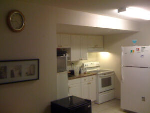 Basement room for rent in the Village at York University