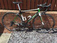 Carbon Road Bike - Holdsworth Trentino