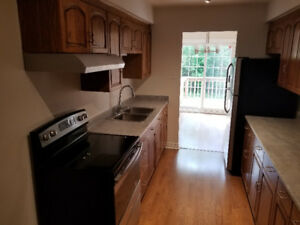 Newly renovated 3 bedroom town home for rent