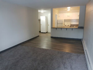 Hidden Gem – Charming 1 Bdrm with Large Patio