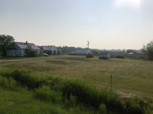 Manitoba Ranch with or without cattle and machinery for sale: