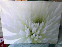 White and Green Floral Canvas