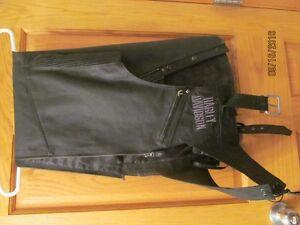 Leather Blazer & Harley Davidson Chaps