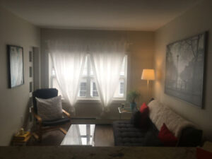 All Inclusive One Bedroom Apartment for January 1st