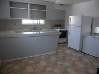 Large 2 Bedroom – Dec 1 – 1000$, all in
