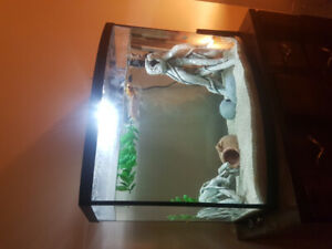40 gal fish tank w filter, heater and decorations