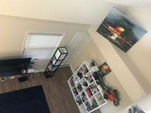 2 Roommates wanted for 2 Bedroom Bright Unit Bronte/Lakeshore