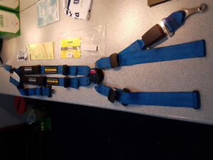 Schroth Racing Safety Harness