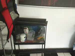 20 gallon aquarium with all accessories and stand