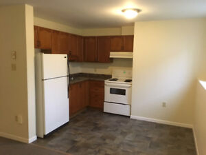 AFFORDABLE, CLEAN TWO BEDROOM AVAILABLE FOR JANUARY