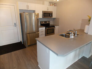 2 BEDROOMS FOR ONLY $234,900!  GORGEOUS OPEN LAYOUT!