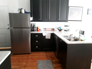 Trendy Loft Apartment in the Heart of Downtown Peterborough