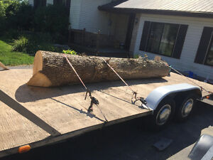 Flatbed dual axel trailer with 3000lbs. Winch Belleville Belleville Area image 2