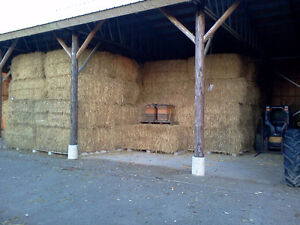 Wheat straw for sale Cambridge Kitchener Area image 4