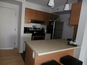 Spacious 3 1/2 Condo For Rent July 1st