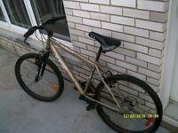 vélo pour home