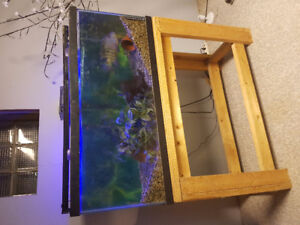 78 Gallon Fish Tank and Stand