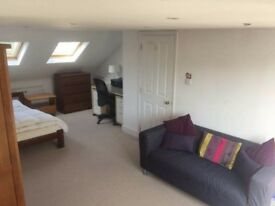 Huge attic room with king bed, juliet balcony in Crouch End