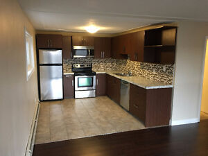 BACHELOR Apartment for Rent London Ontario image 2