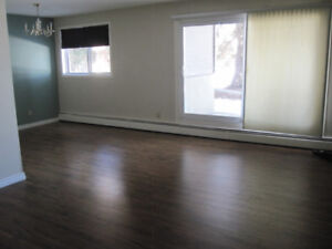 One Bedroom - All Utilities & Wi-Fi & Cable Incl, 18+, No Pets