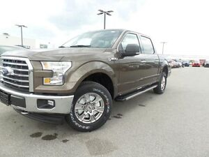 2017 Ford F-150 *DEMO* XLT 5.0L V8 301A