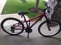 Norco mountain bike for sale!