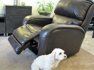 Leather - like  Electric Recliner